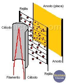 Estructura Básica del Triodo (Funcionamiento básico del Triodo)