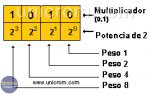 Cómo Funciona el Sistema de Numeración Binario?